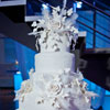 Floral and feather snowflakes cake topper