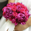 Delicate pink and purple carnation pomander, tied with white ribbon