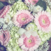 Rustic bouquet with light pink daisies and additional green and white flowers.