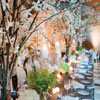 Branches with cherry blossom flowers and simple candlelight