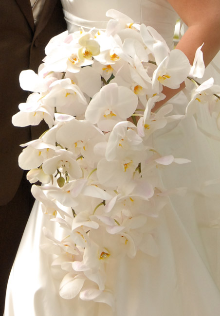 Ideas for your bridal bouquet and wedding flowers todaysbride cascading white orchid bouquet mightylinksfo