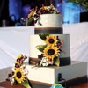 3 tier white cake with black and burgundy ribbon details and sunflowers