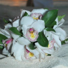 Island-inspired bouquet with white alstroemeria and assorted greenery