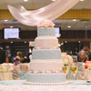 5 tier tiffany blue and blush pink with matching pearl accents and topped with real roses