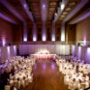 Coloured lights fill the room with purple ambiance