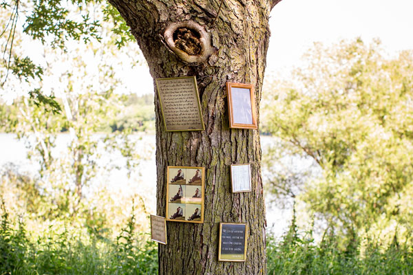 Memory tree with framed pictures and love notes from the happy couple